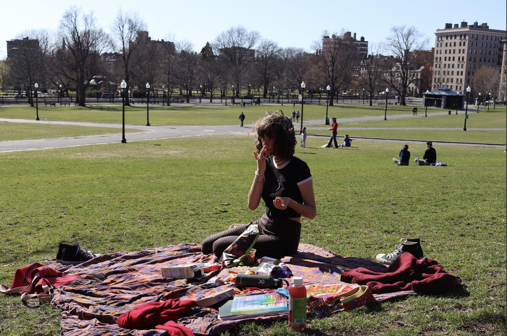 Picnic in Boston